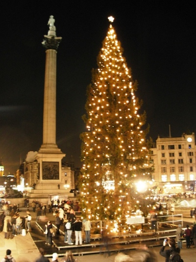 Source: http://www.london-attractions.info/trafalgar-square-christmas-tree.htm